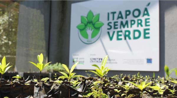 Programa - Itapoá Sempre Verde 1